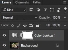 لایهی جدید color lookup در فتوشاپ