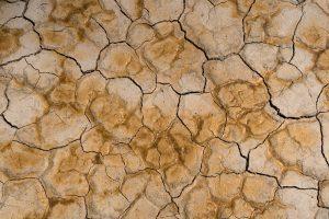 گیاهخواری و تغییر اقلیم و بحران آب